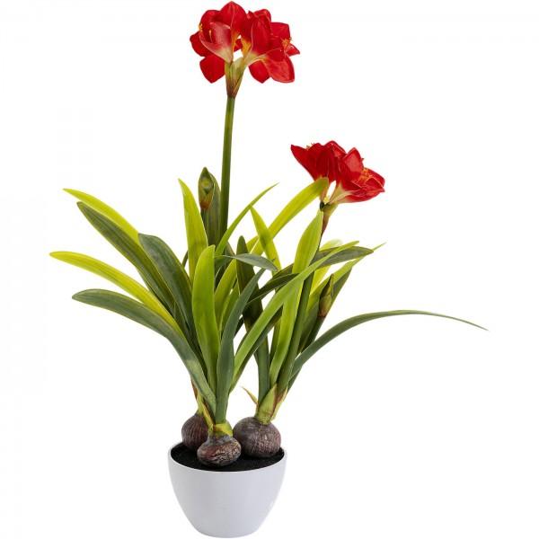 Deco Plant Amaryllis Red 98