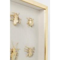 Dekorahmen Bugs 60x60cm