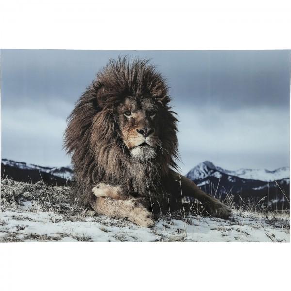Bild Glas Proud Lion 180x120cm
