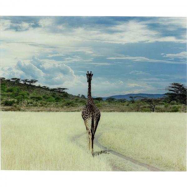 Bild Glas Savanne Giraffe 100x120