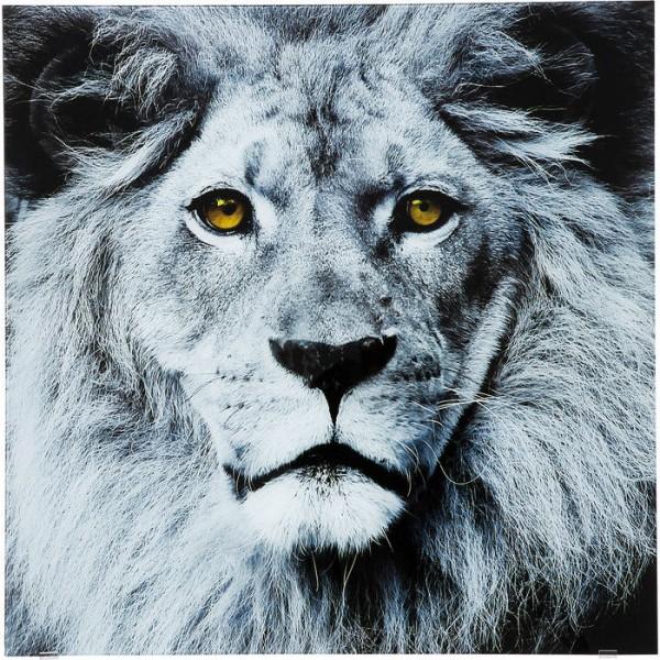Bild Glas Face Lion 80x80cm
