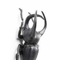 Wandschmuck Atlas Beetle Matt Schwarz